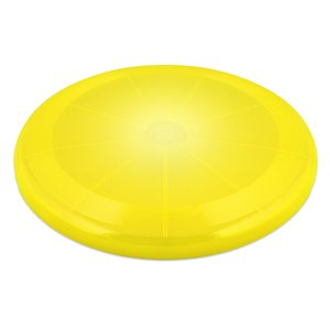 Best Friend Led frisbee