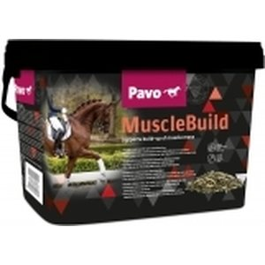 Pavo Muscle Build