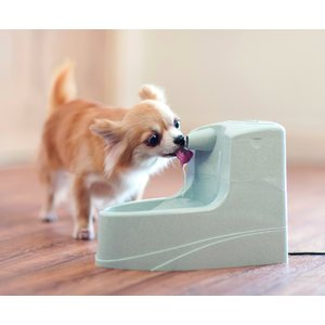 PetSafe Drinkwell Mini Fountain 1,2 L